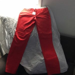 Calvin Klein Red Pants